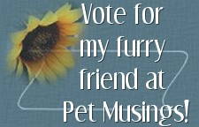 vote4mebutton-petmusings.jpg